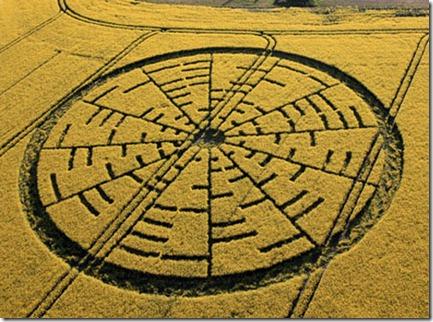500x_cropcircle